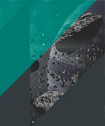 Imagen: Conferencia Asteroide