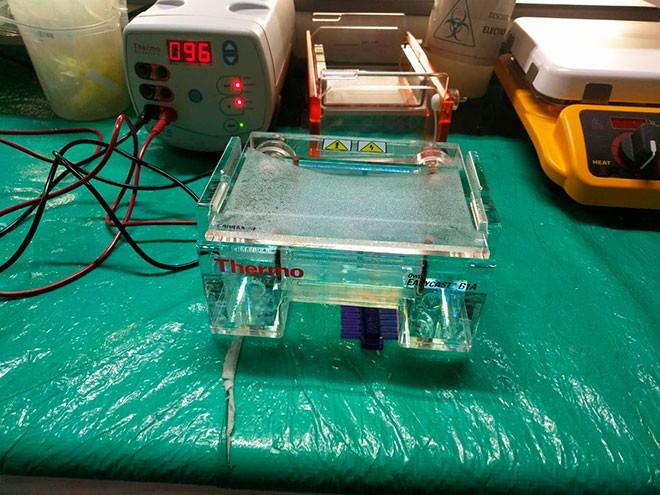 Imagen: Estudiantes deIngeniería Biomédica conocen equipos tecnológicos en la salud