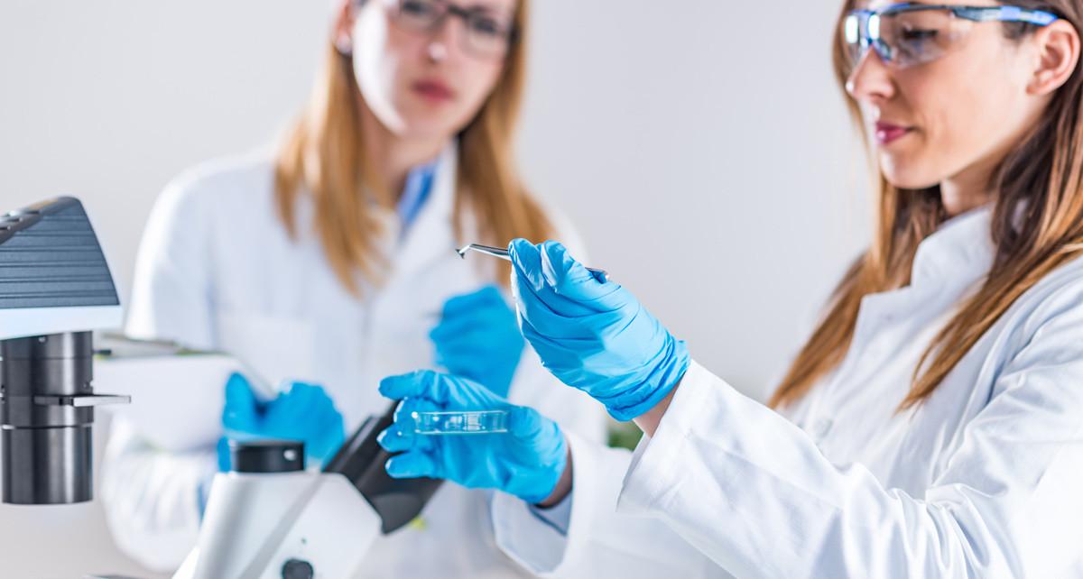 Licenciatura en Química Farmacéutica con Especialidad en Industria y Atención Farmacéutica
