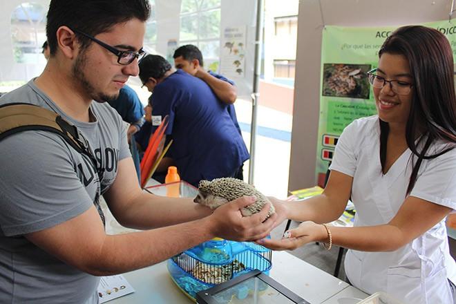 Imagen: Se realiza el 2do. Festival de Salud Pública Veterinaria