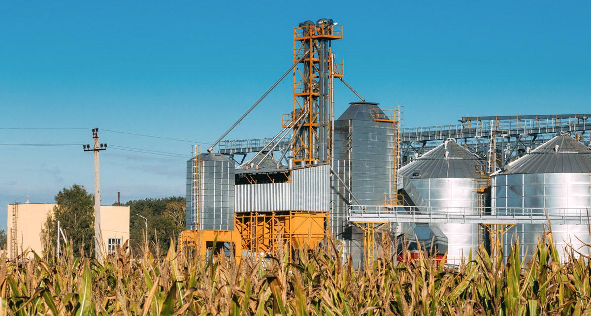 Maestría en Productividad en Ciencias Agrícolas