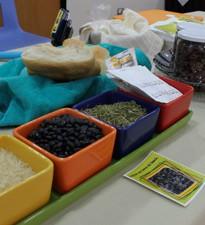 Imagen: Estudiantes de FACTI crean productos alimenticios  innovadores