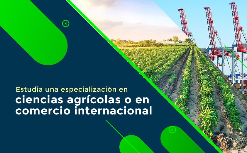 Estudia una especialización en ciencias agrícolas o en comercio internacional
