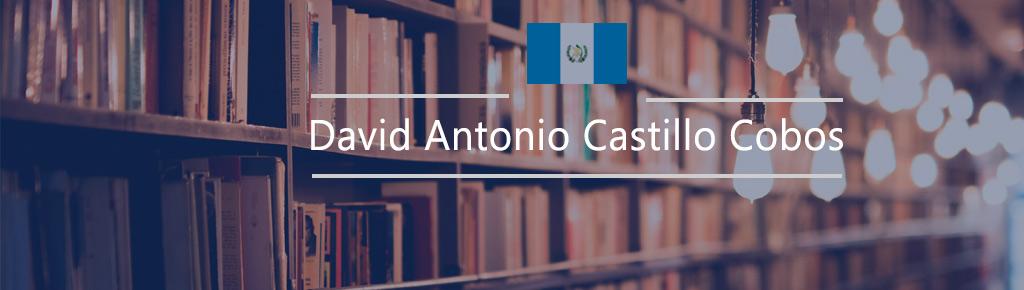 Imagen: David Antonio Castillo Cobos